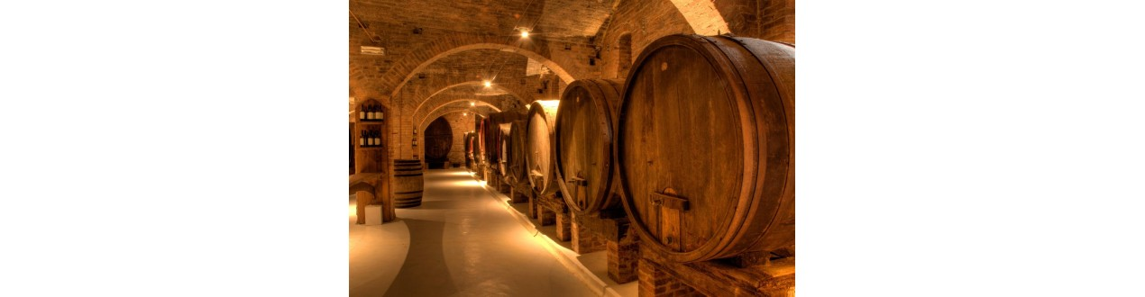 Cellars of Salento in Puglia and in Salento recommended SelfWines.it - Self Wines